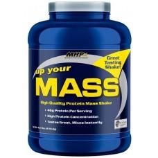 MHP Up Your Mass 2.27 кг (Печенье с орехом)